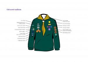 Cub Badge Positions